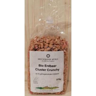 Erdbeer - Cluster - Crunchy biol. Anbau